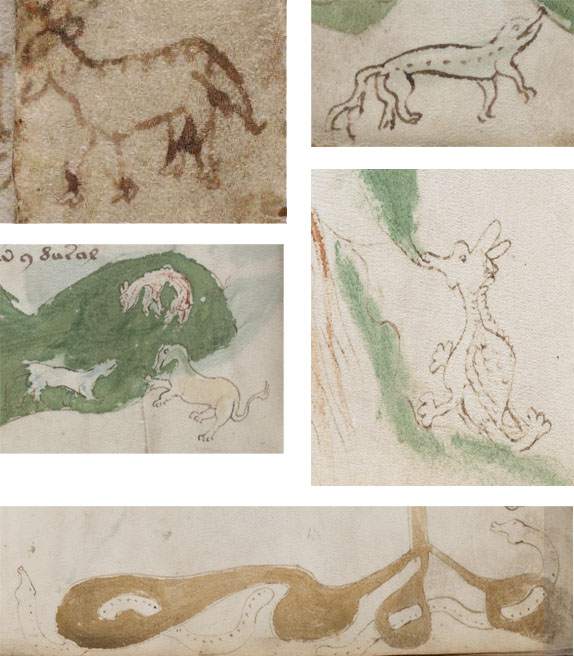 Animal doodles in the Voynich Manuscript.
