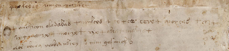 Marginalia on f116v  (last page) of the Voynich Manuscript.