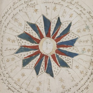 Figure 10. f67r1, a candidate for a stylised supernova in the Voynich Manuscript.