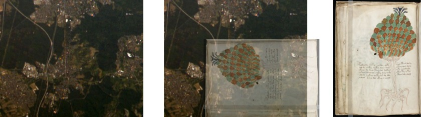 Figure 16. Left: Satellite view of southern Darmstadt. Right: f11v's plant. Centre: Both images superimposed.